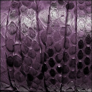 Python Flat Leather per inch Purple