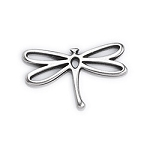 Dragonfly Frame Charm-  Pk of 4